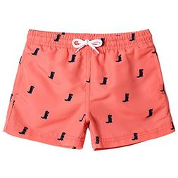 MaaMgic Boys Kids Cute Dinosaurs Short Swim Trunks Boardshor