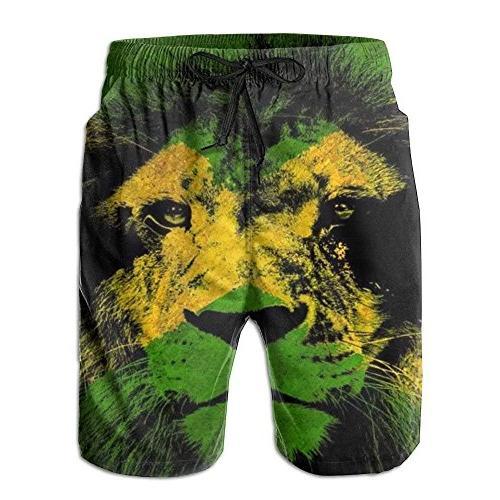 jamaican flag with lion men s swim